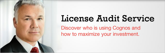 License Audit Service